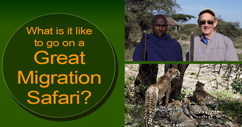 What is it like to go on a Great Migration Safari?