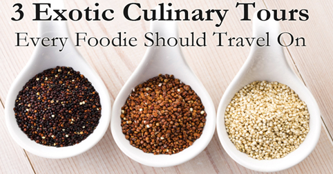 3 Exotic Culinary Tours Every Foodie Should Travel On