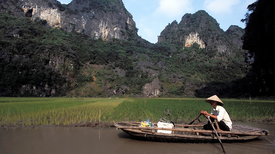 Culinary Journey through Vietnam
