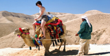 Jordan: A Cultural & Cinematic Destination