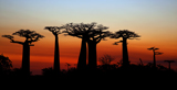 Madagascar - A Journey into Culture & Nature