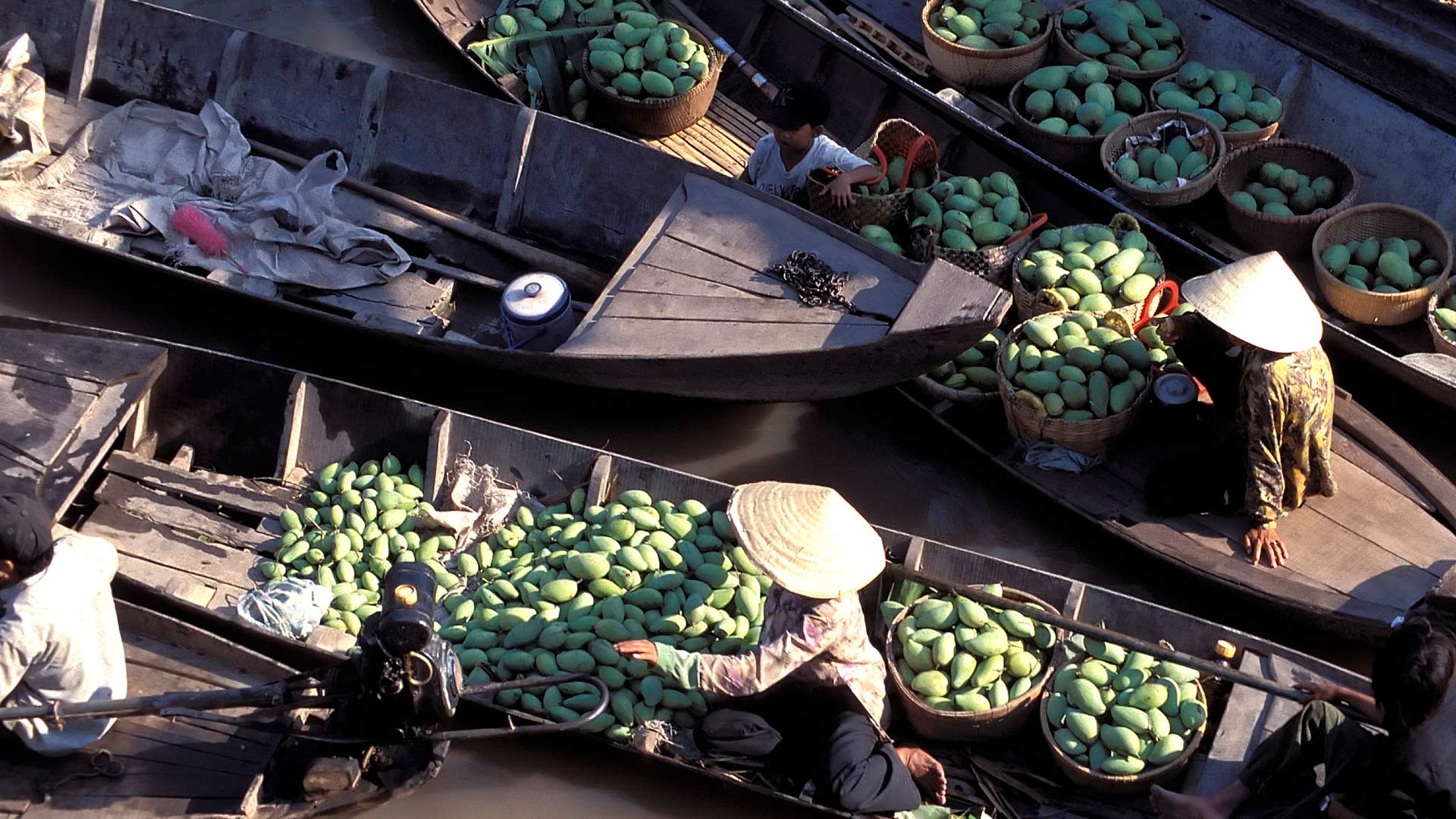 Boats laden with green mangos and other produce at a floating market on the Mekong River by My Tho, Mekong Delta, Long An, Vietnam