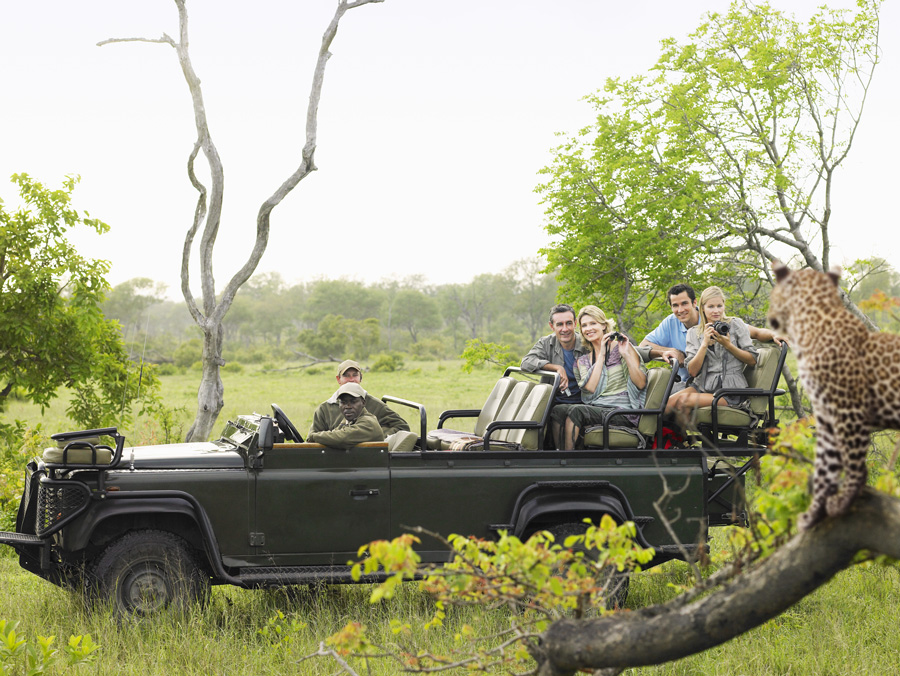 tourists on safari game drive enjoying close encounter with Leopard