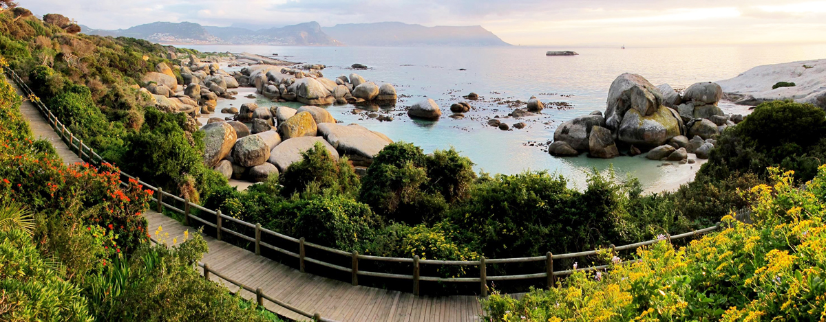 Beautiful Boulders Beach panoramic view