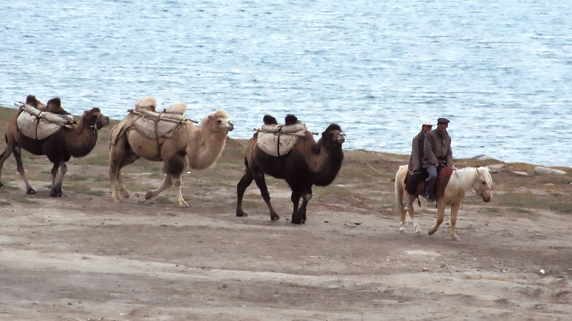 Men on horseback and Bactrian Camel (Camelus bactrianus) caravan by Lesser Karakul Lake, Xinjiang, China