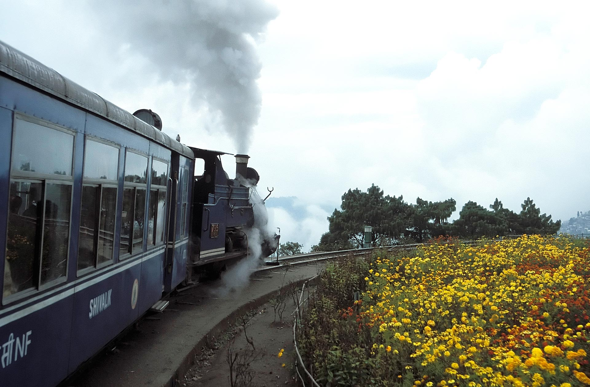 Toy train at the Batasia Loop, Darjeeling Himalayan Railway, West Bengal, India