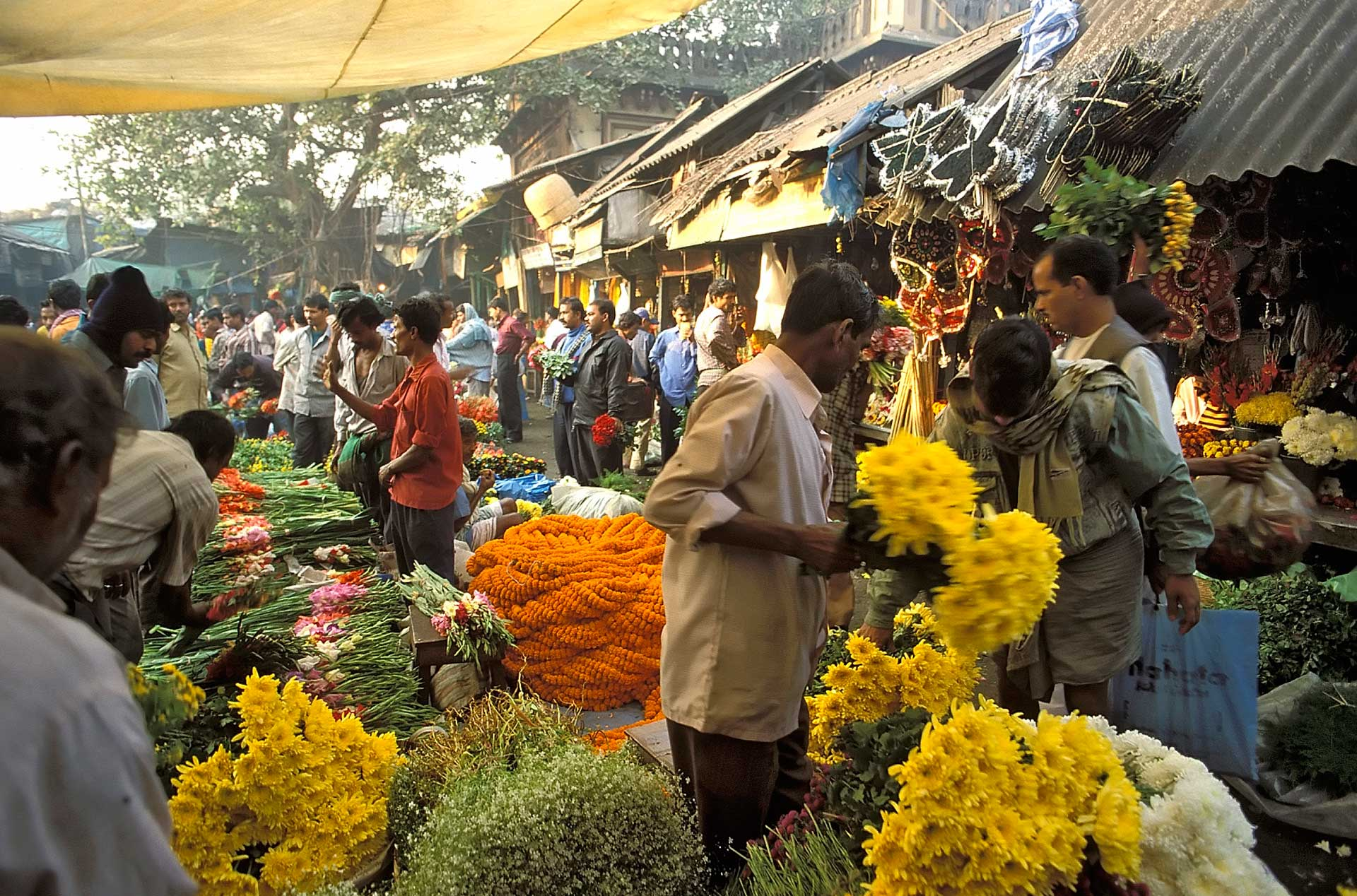 Man selling flowers at the flower market in the early morning, Kolkata, West Bengal, India