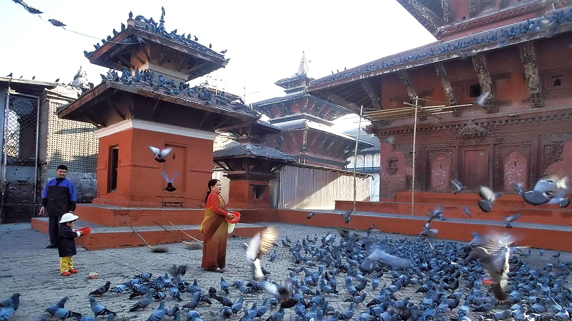 Pigeons on the square at the Jagannath Temple, Kathmandu, Madhyamanchal (Central Region), Nepal