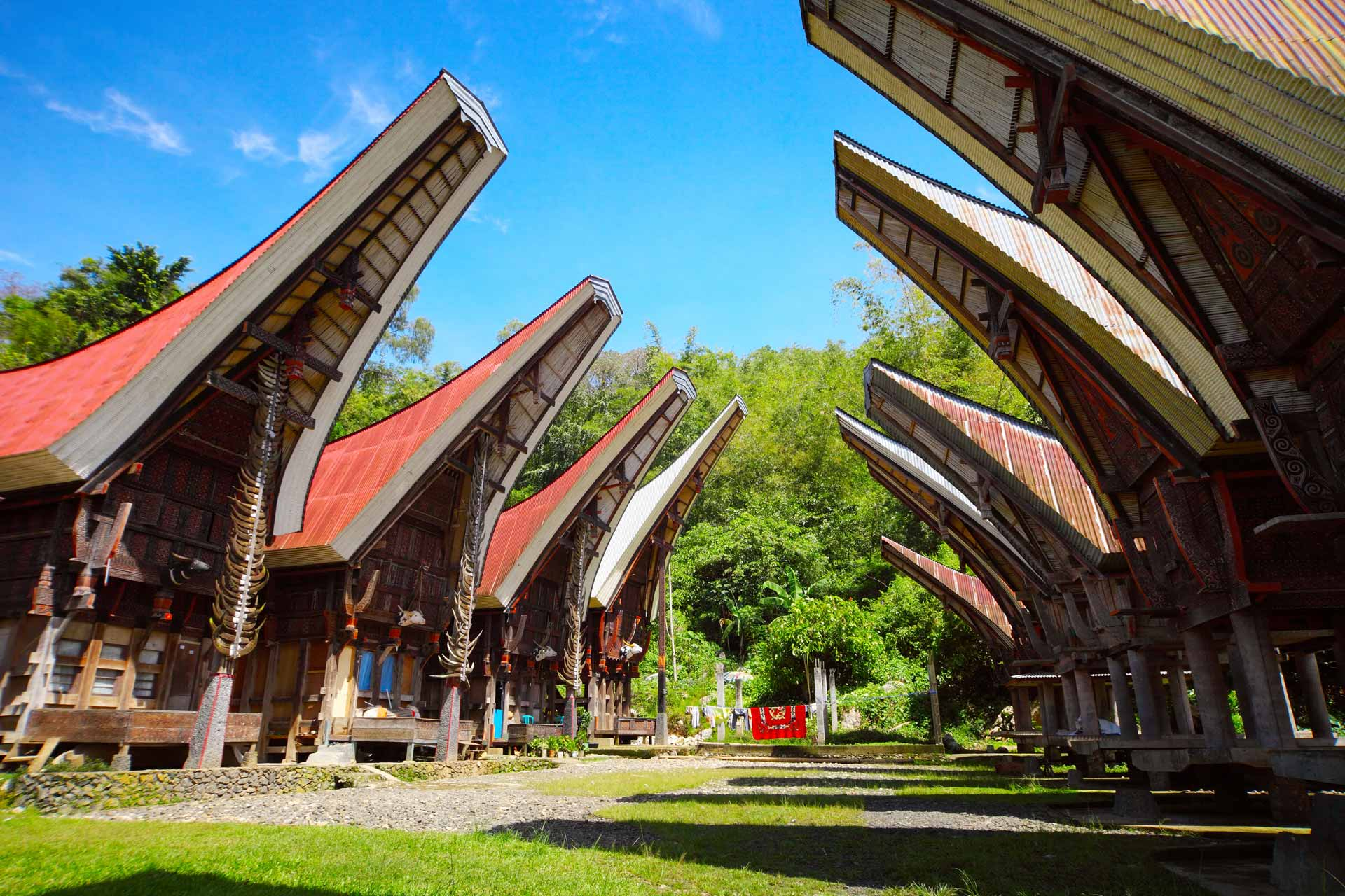Traditional homes of the Toraja's people on Sulawesi island. Indonesia
