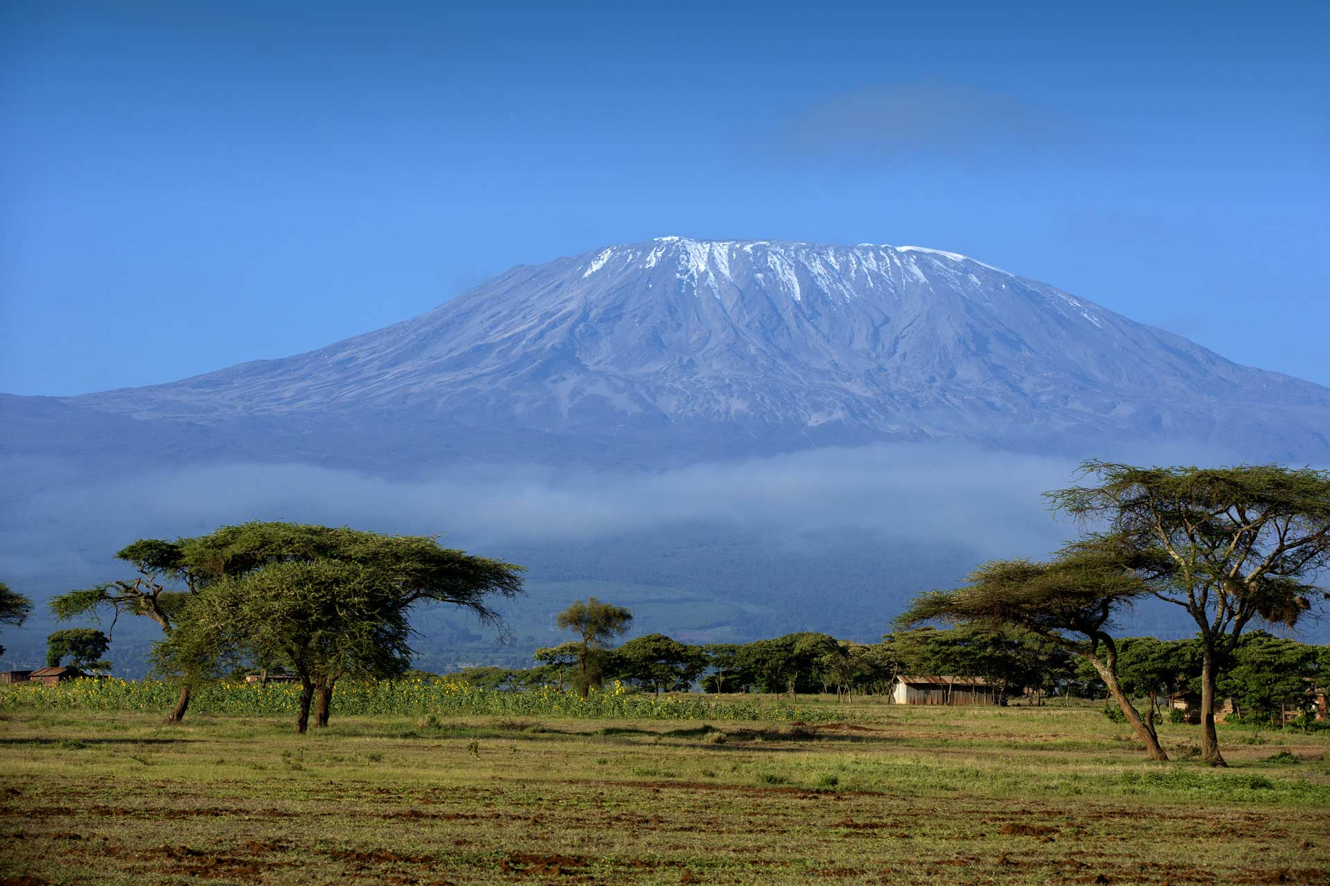 Snow on top of Mount Kilimanjaro in Amboseli