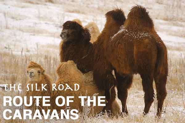 Route of the Caravans: The Silk Road